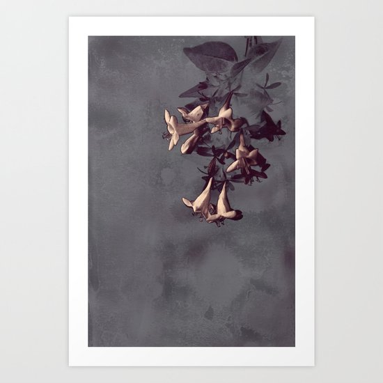 Evening Flowers Art Print