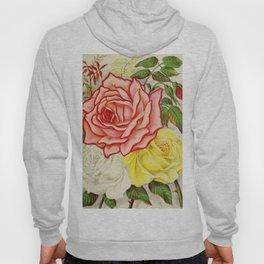 Vintage Multi Colored Rose Illustration (1886) Hoody