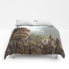 Cobweb Cattail Comforters