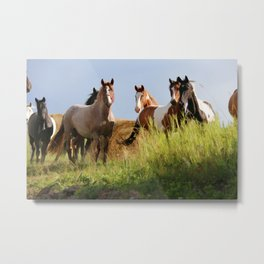 The Wild Bunch-Horses Metal Print