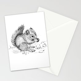 Baby Squirrel Stationery Cards