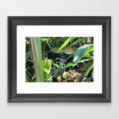 Don't go chasing Waterfalls Framed Art Print