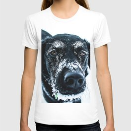 Snow Dog // Cross Country Skiing Black and White Animal Photography Winter Puppy Ice Fur T-shirt