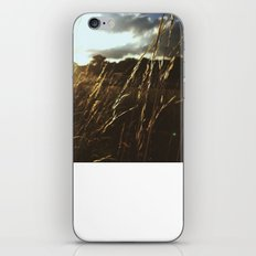 Golden Rays iPhone & iPod Skin