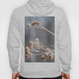 Dry Flower Hoody