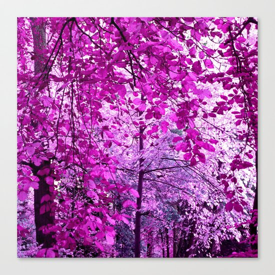 purple forest II Canvas Print