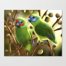 Double-eyed Fig Parrot Canvas Print