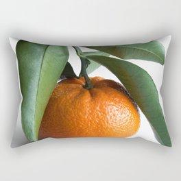 Orange Fruit Photography Rectangular Pillow