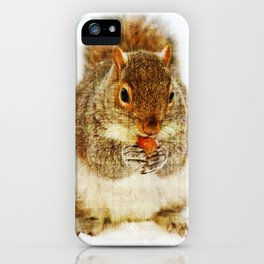 Squirrel with an Acorn iPhone Case