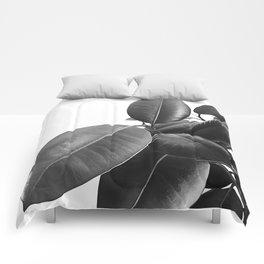 Ficus Elastica #23 #BlackAndWhite #foliage #decor #art #society6 Comforters