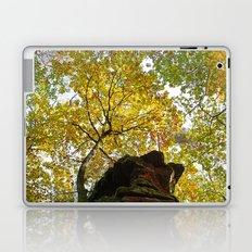 Beautiful fall Laptop & iPad Skin