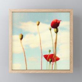 Lost Poppies Framed Mini Art Print