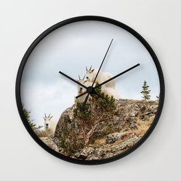 Three Ami-Goats // Scenic Hike Animals Photograph Colorado Wildlife National Park Mountain Goats Wall Clock