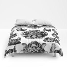 Ernst Haeckel Bats Comforters