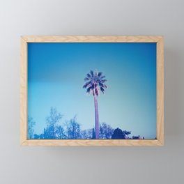 Palm tree Framed Mini Art Print