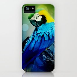 Macaw on branch iPhone Case