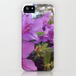Flower Close Up iPhone Case