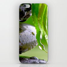 Wellness Stones iPhone & iPod Skin