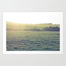 Light in the fields Art Print