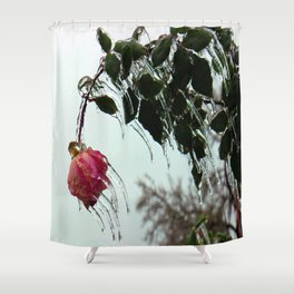 fROSEn Shower Curtain