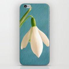 Single Snowdrop iPhone & iPod Skin