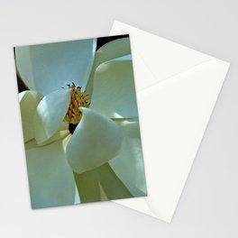 Blue Magnolia Stationery Cards