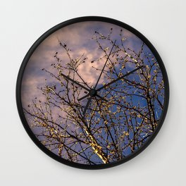 tree in spring and cloudy sky Wall Clock