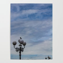 Large space of free sky and two small luminaries where a group of pigeons have posed. Poster