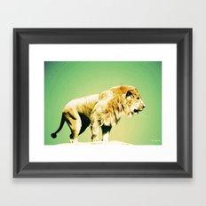 Lion II Framed Art Print