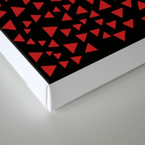 RED TRI Canvas Print