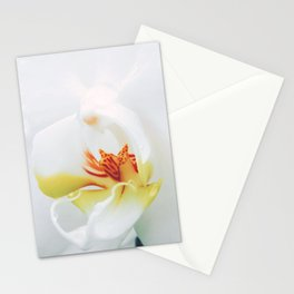 Close up Orchid 27 Stationery Cards