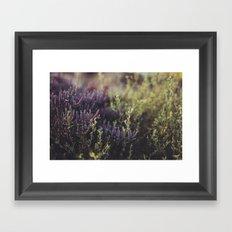 Native Australian Bush Framed Art Print