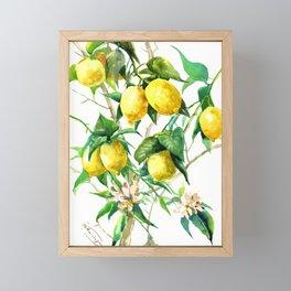 Lemon Tree. lemons kitchen art Framed Mini Art Print