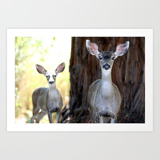 Two Deer Art Print
