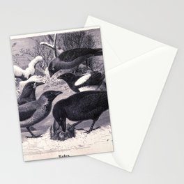 016 Western jackdaw Corvus monedula rook Corvus frugilegus hooded crow Corvus cornix Eurasian magpie Pica pica common raven6 Stationery Cards