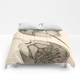 Horseshoe Crabs Comforters