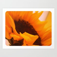 SunflowerPower ~ retro sunny orange flower Art Print