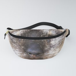 Portrait of a Siamese cat Fanny Pack