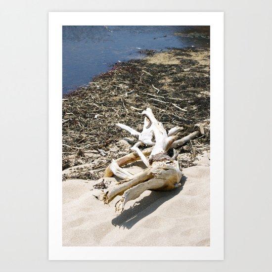 Sand Beach Art Print