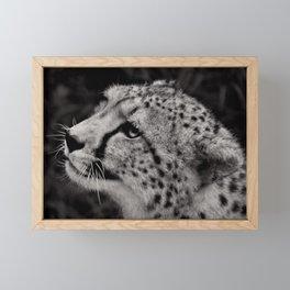 Cheetah profile Framed Mini Art Print