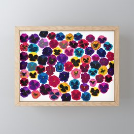 Plentiful pansies Framed Mini Art Print