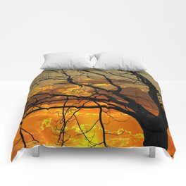 Sunset Tree, California Comforters