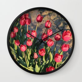 Red Tulips Square Wall Clock