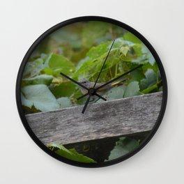 A Female American Redstart Wall Clock