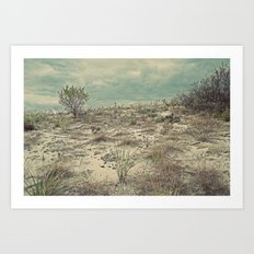 Nautica:  The Dune Vigil Art Print