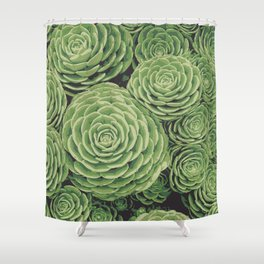 Succulents | Garden Plants Shower Curtain