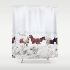 Winter Horseland Shower Curtain