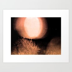 Dark Night Ruby Art Print