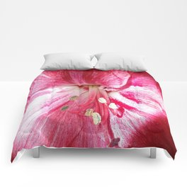 Nature's Beauty Comforters