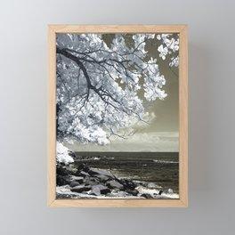 Coast 14 Framed Mini Art Print